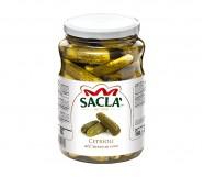 CETRIOLI SACLA' MEDI KG.1,6 VT (sg.0,93)