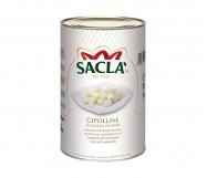 CIPOLLINE KG.5 SACLA'