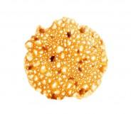 circle nocciola 140 pz (500 g.)