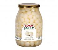 CIPOLLINE KG.1 VT SACLA'