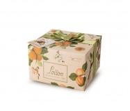 panettone albicocca e zenzero gr.500 loison